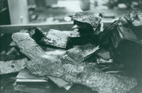 Books and melted lamp after the Seelye Reference Room fire in Neilson Library, October 1975.